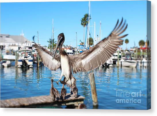 Pelican Flying In Canvas Print