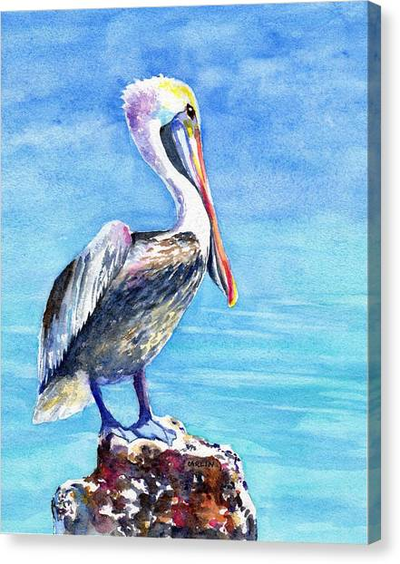 Pelican On A Post  Canvas Print