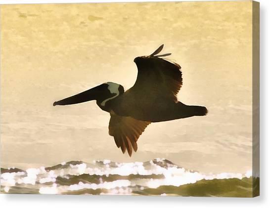 Pelican Patrol Canvas Print