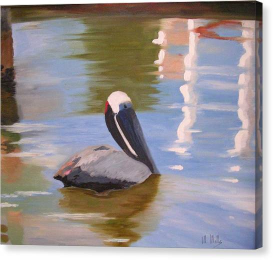 Pelican Pete Canvas Print