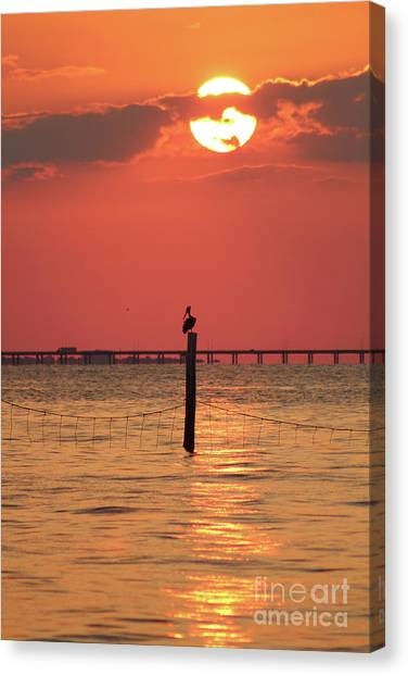 Fire Ball Canvas Print - Pelican Silhouette At Sunset by Maili Page