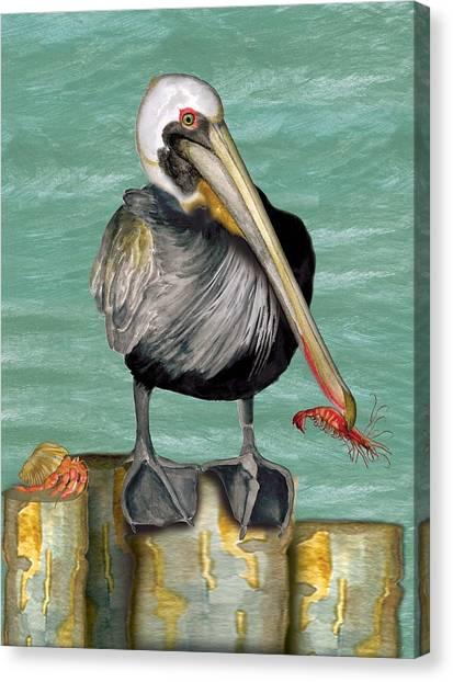 Pelican With Shrimp Canvas Print