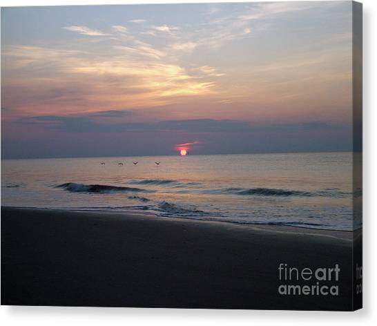 Pelicans At Sunrise On Tybee  Canvas Print