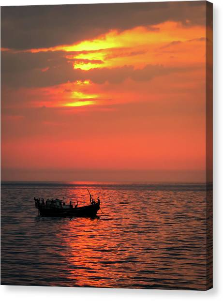 Pelicans At Sunset Canvas Print