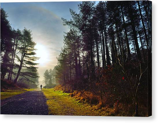 Pembrey Country Park 1 Canvas Print
