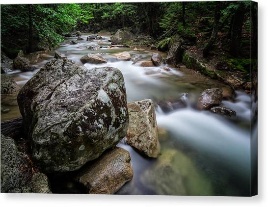 Canvas Print featuring the photograph Pemi-basin Trail by Michael Hubley