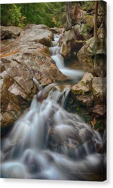 Pemigewasset Cascade 8378 Canvas Print