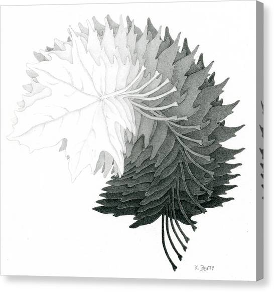 Pencil Drawing Of Maple Leaves Canvas Print