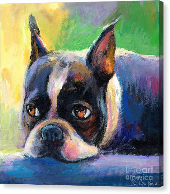 Boston Terrier Canvas Print - Pensive Boston Terrier Dog Painting by Svetlana Novikova
