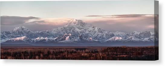 Alaska Canvas Print - Pensive by Ed Boudreau