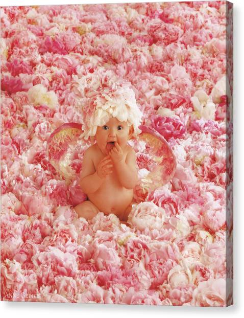 Peony Canvas Print - Peony Angel by Anne Geddes