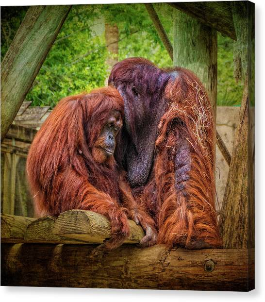 People Of The Forest Canvas Print