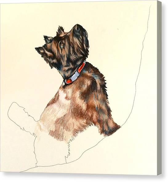 Pepper Canvas Print by Carol Meckling