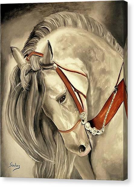 Peralta Andalucian Canvas Print