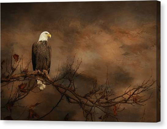 Eagle Scout Canvas Print - Perched Eagle by Lori Deiter