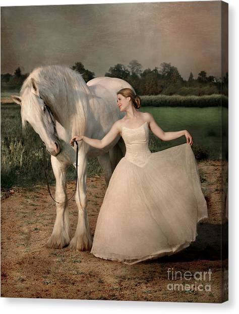 White Horse Canvas Print - Perfect Dancers by Dorota Kudyba