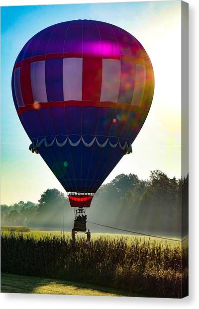 Perfect Landing Canvas Print