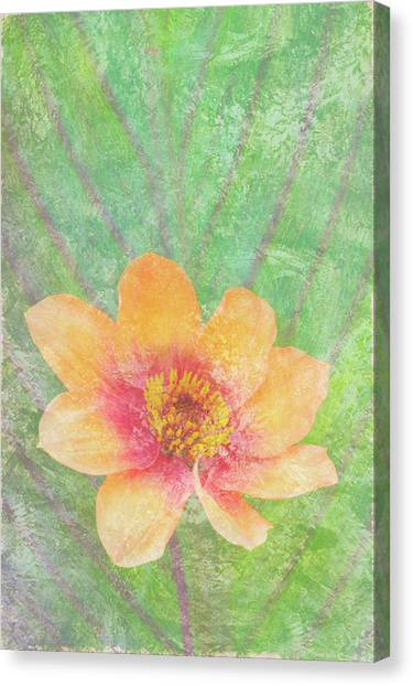 Peaches Canvas Print - Perfect Peach by JQ Licensing