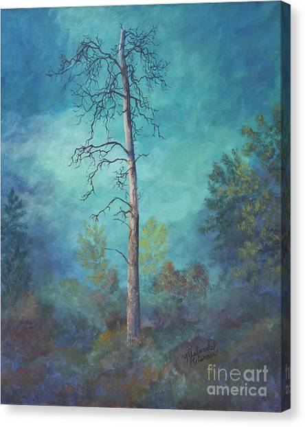 Warner Park Canvas Print - Perishing Ponderosa by Malanda Warner