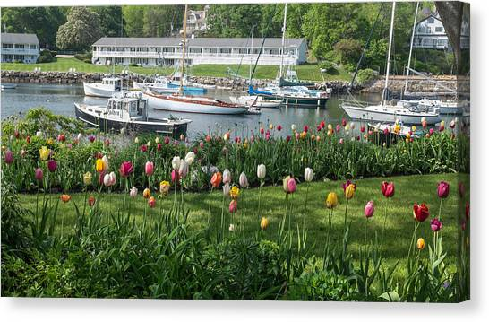 Lobster Boat Canvas Print - Perkins Cove Tulips by Joseph Smith