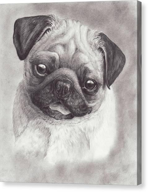 Perky Pug Canvas Print