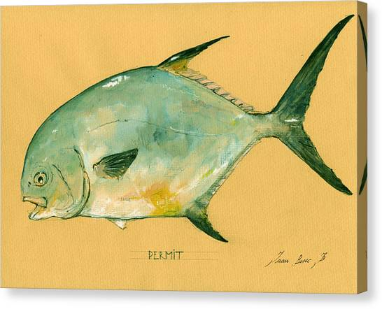 Fly Fishing Canvas Print - Permit Fish by Juan  Bosco