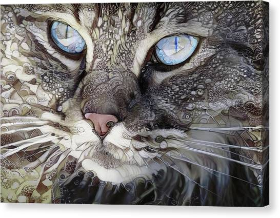 Perry The Persian Cat Canvas Print