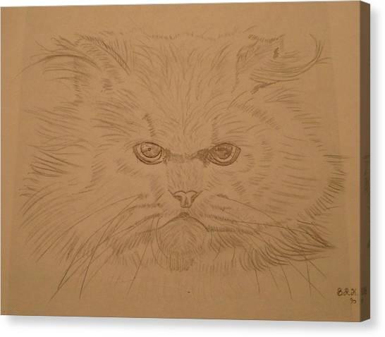 Persian Cat 4 Canvas Print by Bo Klinge