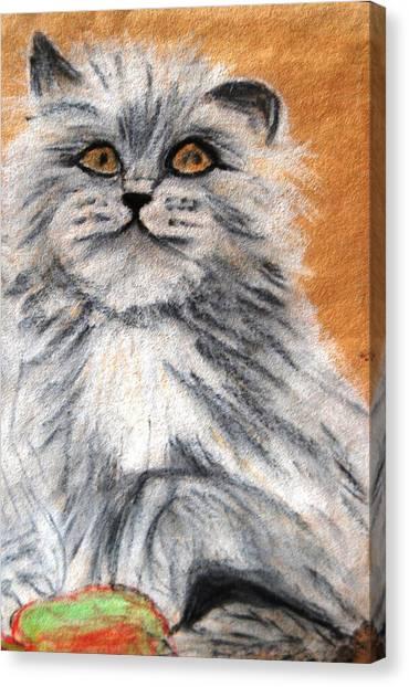 Persian Cat Canvas Print