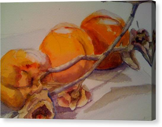 Persimmons Canvas Print by KC Winters