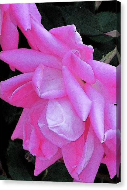Petals Canvas Print by Michele Caporaso