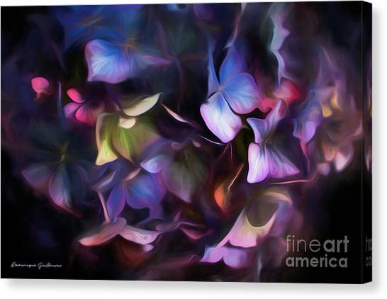 Petals Of Hydrangea Canvas Print