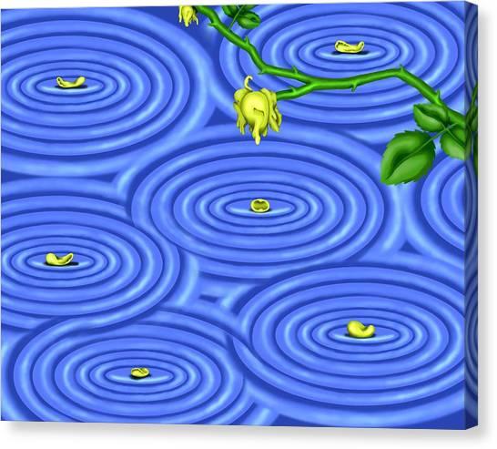 Petals On Water IIi Canvas Print