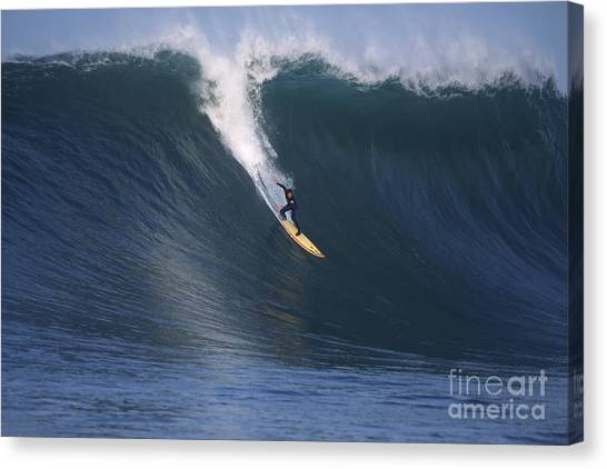 Pete On A Glassy Wall Canvas Print by Stan and Anne Foster