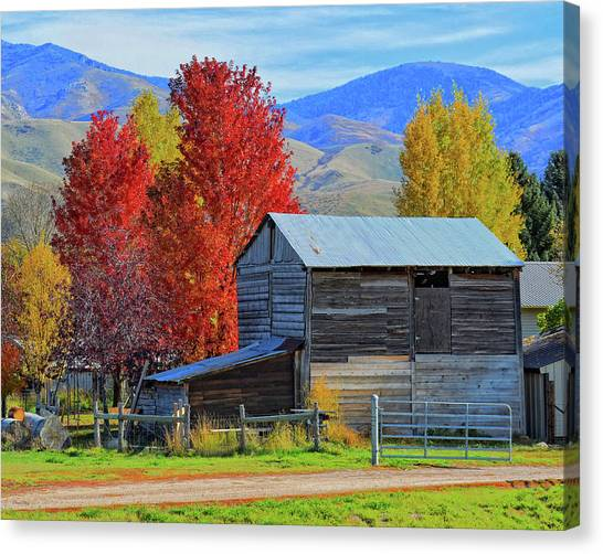 Peterson Barn In Autumn Canvas Print