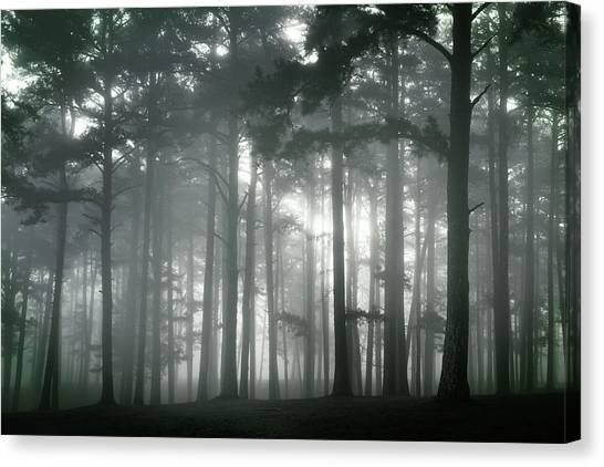 Petit Jean Fog Canvas Print