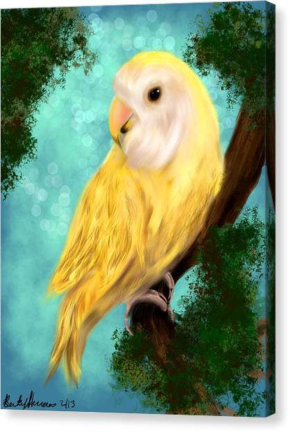 Petrie The Lovebird Canvas Print