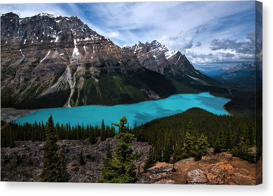 Canada Glacier Canvas Print - Peyto Lake In Banff National Park Canada by Dave Dilli