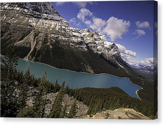 Peyto Lake Canvas Print