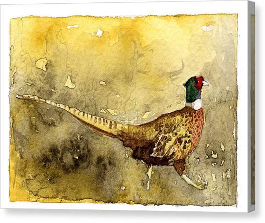 Pheasant Canvas Print by Eunice Olson