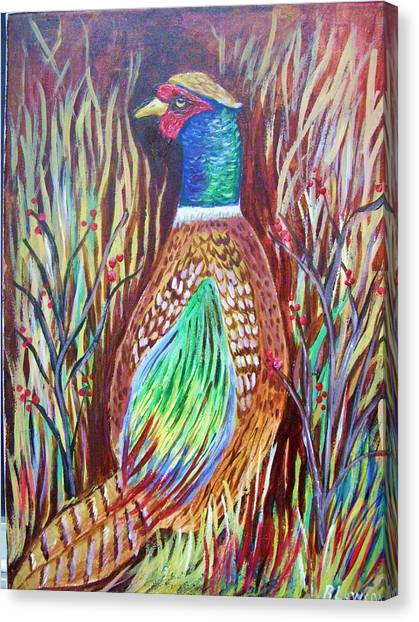 Pheasant In Sage Canvas Print