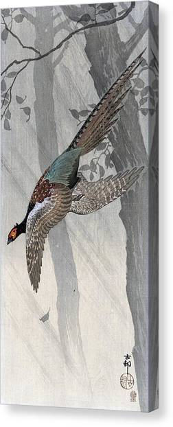 Pheasants Canvas Print - Pheasant - Top Quality Image Edition by Ohara Koson
