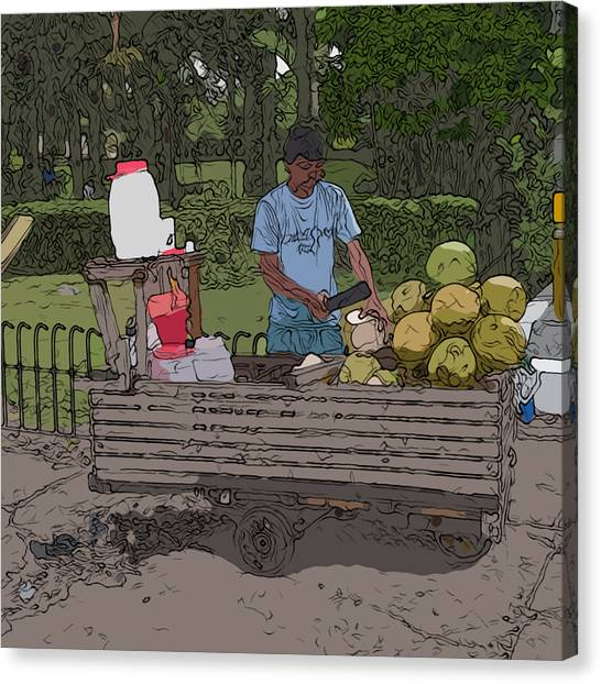 Philippines 936 Buko Canvas Print