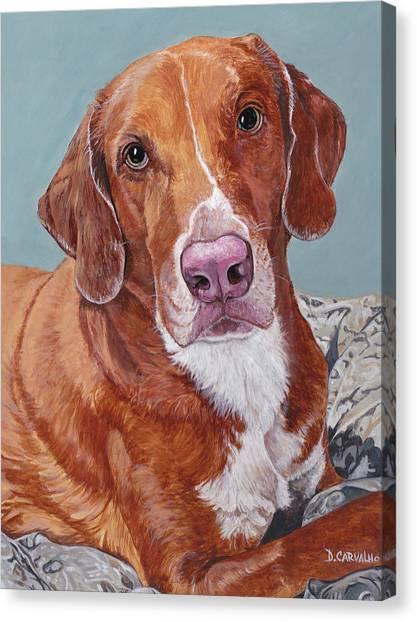 Phoebe Canvas Print