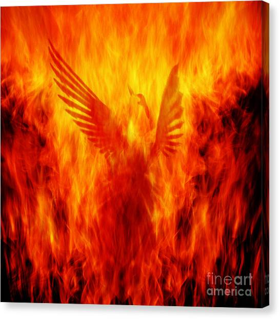 Rebirth Canvas Print - Phoenix Rising by Andrew Paranavitana