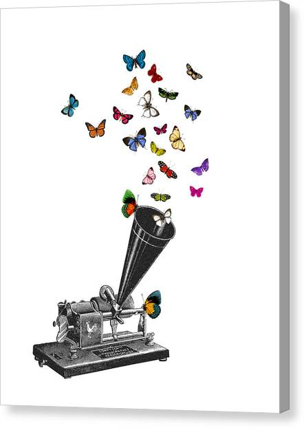 Media Canvas Print - Phonograph And Butterflies Print by Madame Memento