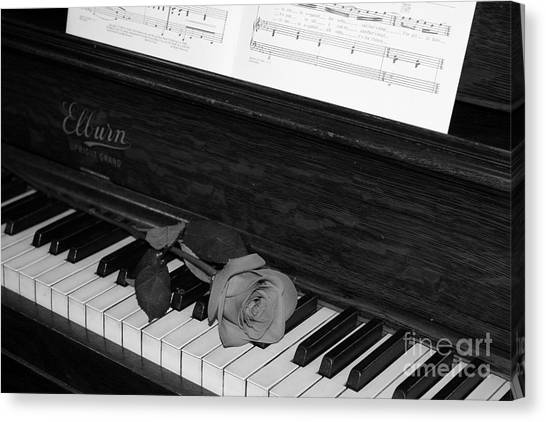 Piano Rose Canvas Print