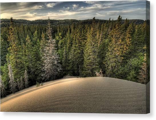 Pic Dunes   Canvas Print
