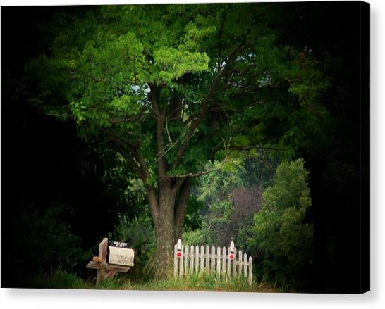 Picket Fence Mailbox Canvas Print by Michael L Kimble
