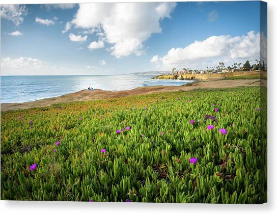 Picnic At Sunset Cliffs Canvas Print